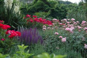 Gartengestaltung Meran und Passeier 6