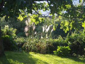 Gartengestaltung Meran und Passeier 8